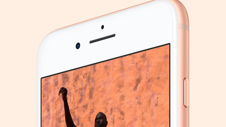 iPhone 8 Plus Camera Review
