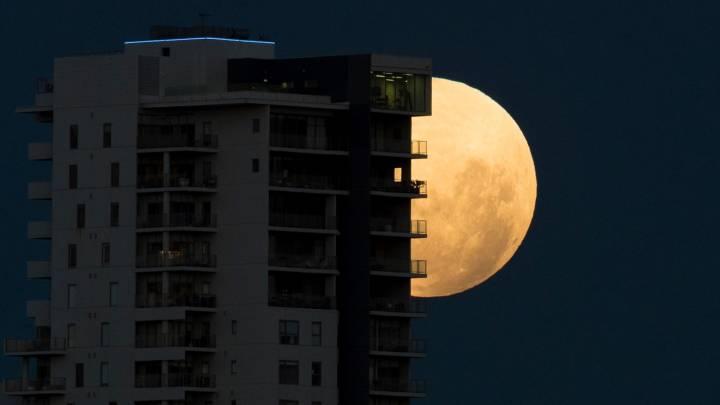 pink moon 2019