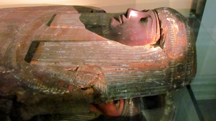 mummy research