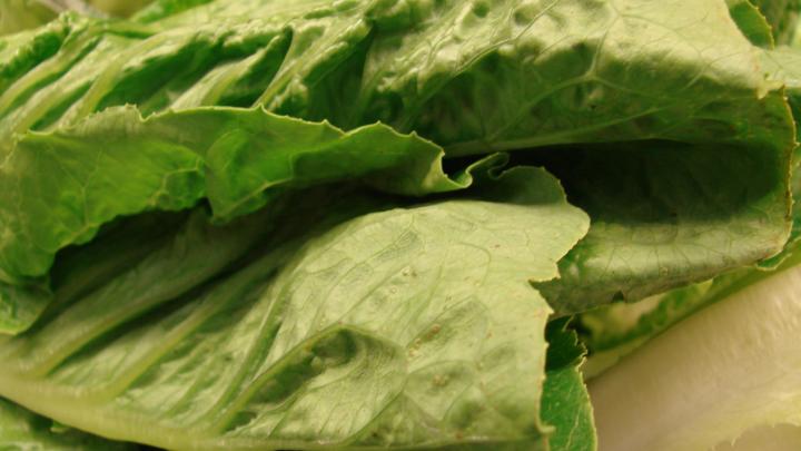 e coli romaine lettuce states affected