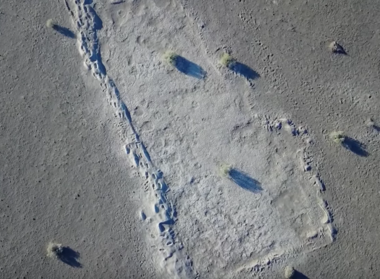 mammoth footprints