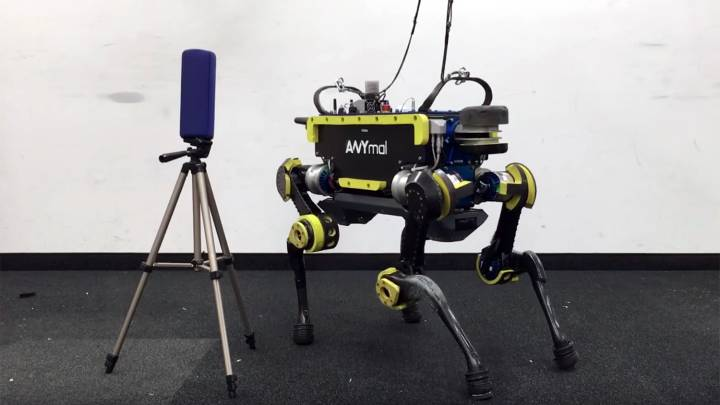 Robot Dog Video