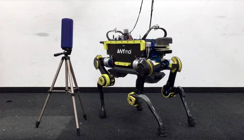 Robot Dog Video