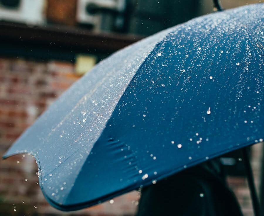 Blunt Umbrella Sale On Amazon