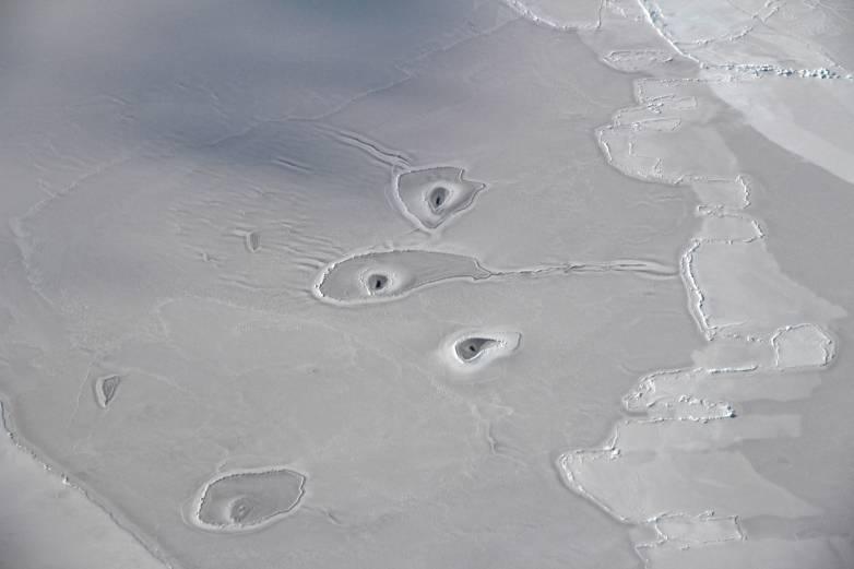 nasa arctic ice