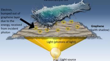 graphene cancer treatment