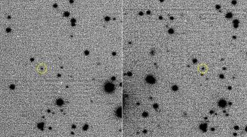 exo-asteroid