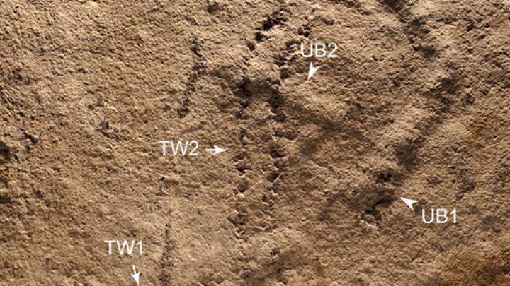 oldest footprints