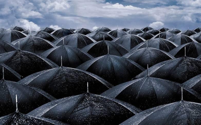 Best-Selling Umbrella On Amazon