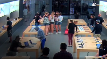 Apple Store thefts, organized crime ring