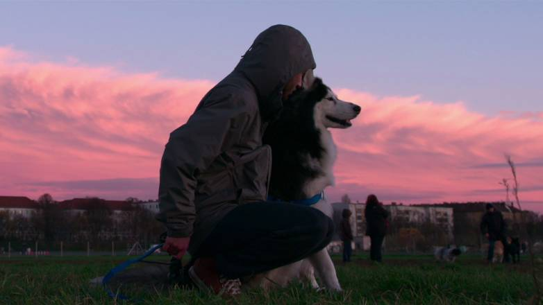 Netflix dogs documentary