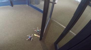 wasp drones