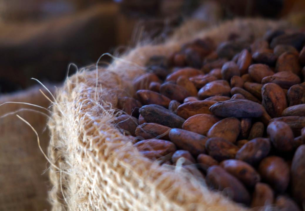 cacao chocolate origin