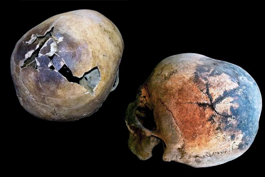 vesuvius skulls
