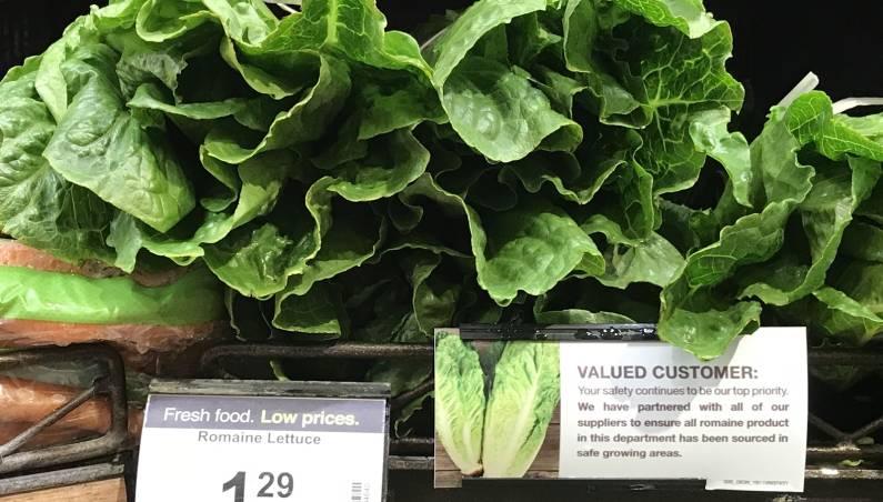 lettuce recall e coli