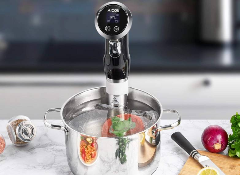 Cheap Sous Vide Amazon