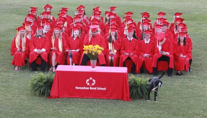 dog graduation
