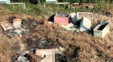 beehive arson