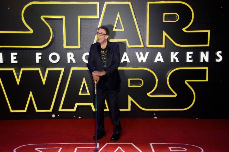 Chewbacca Actor Peter Mayhew