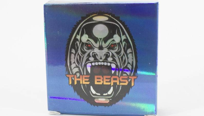 stiff boy the beast