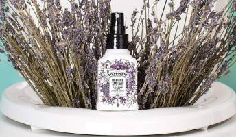 Best Bathroom Deodorizer Spray