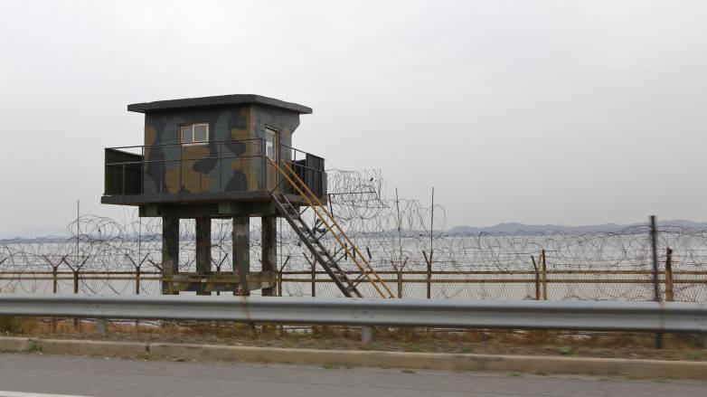 north korea birds