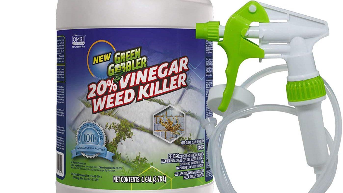 Best Trigger Spray Bottle