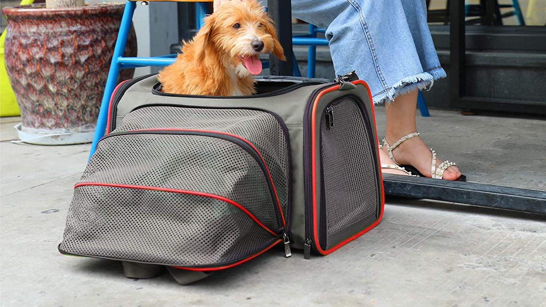 Best Expandable Pet Carrier