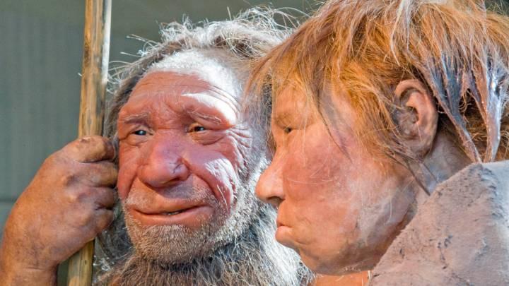 neanderthal ears