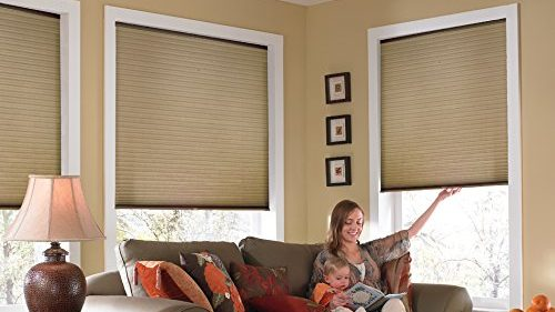 Best Blinds for Your Windows