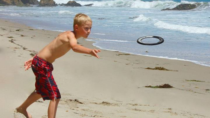 Best Frisbee to Toss Around the Quad