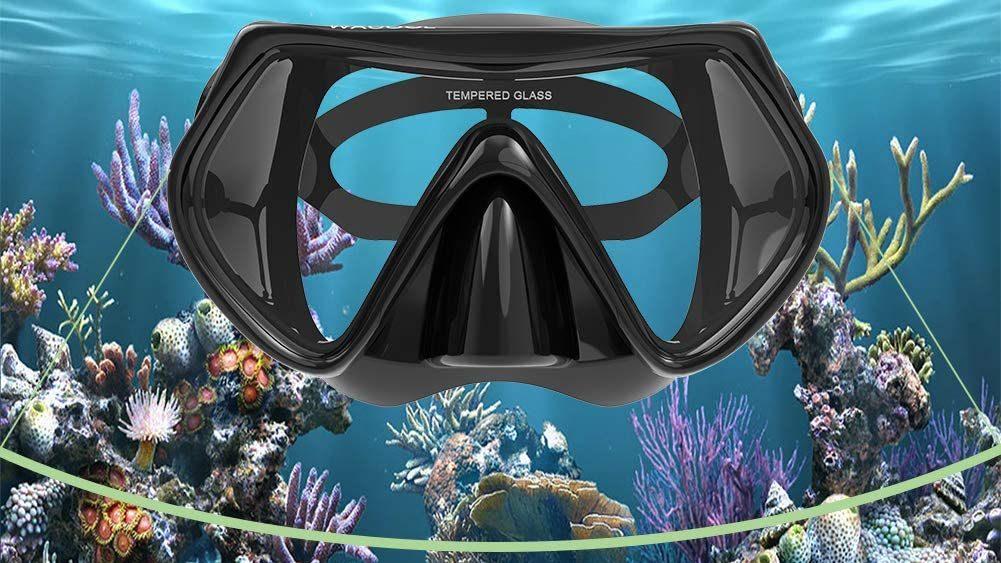 Best Snorkel Mask Set