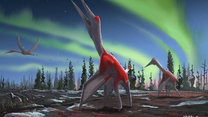 frozen dragon fossils