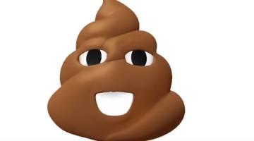 poop pictures