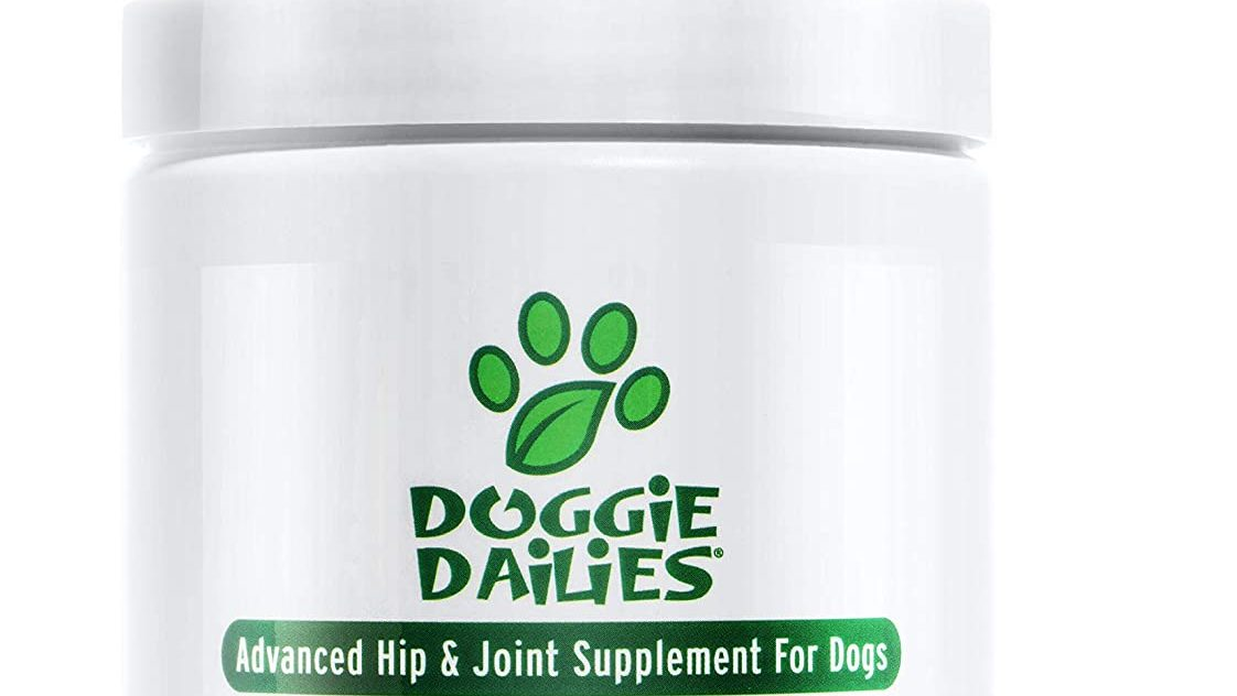 Best for Dogs of All Sizes
