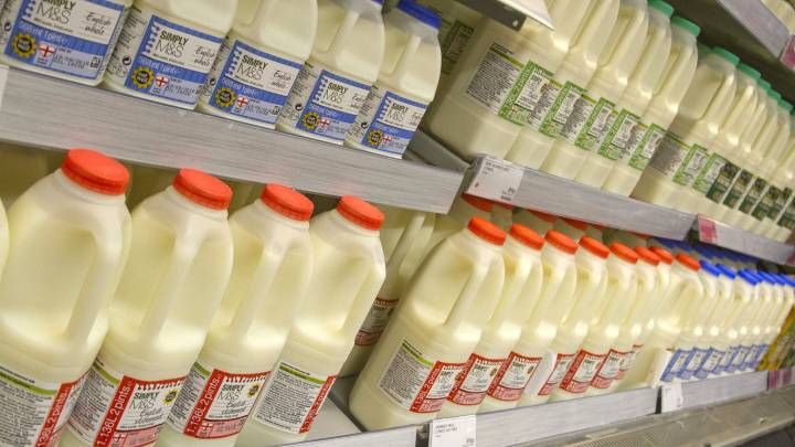 is whole milk healthy