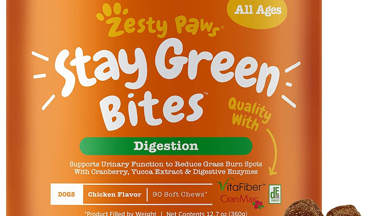 Best Flavor Options