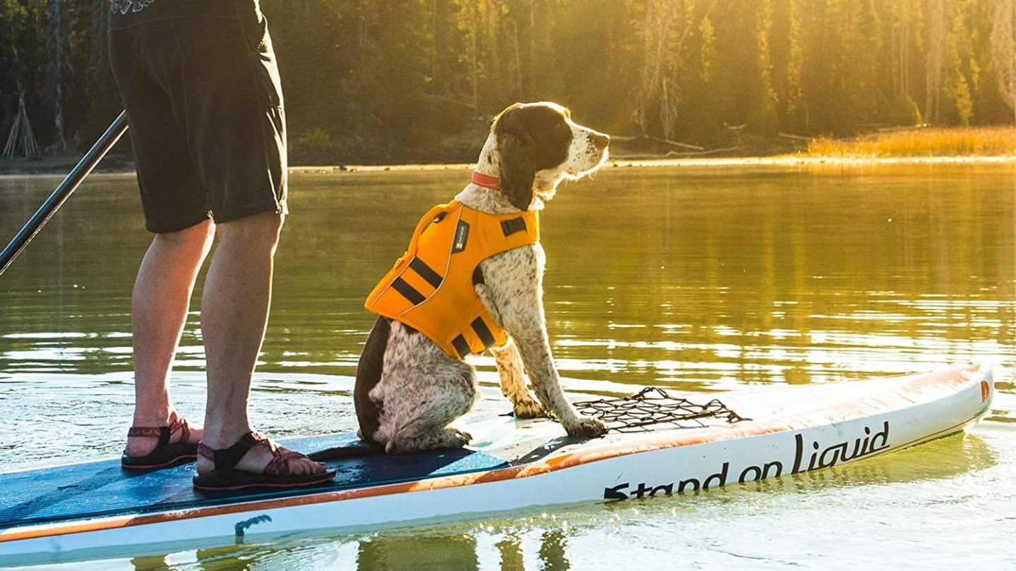 Best Life Jacket for Dogs