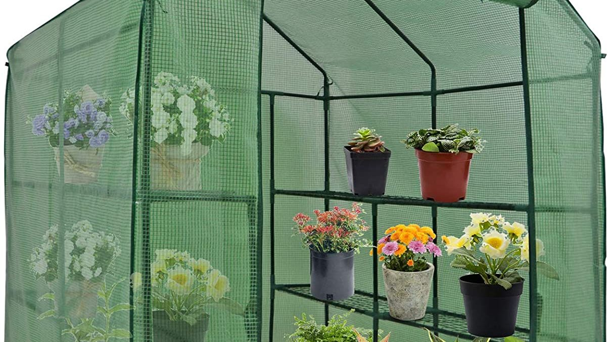Largest Mini Greenhouse