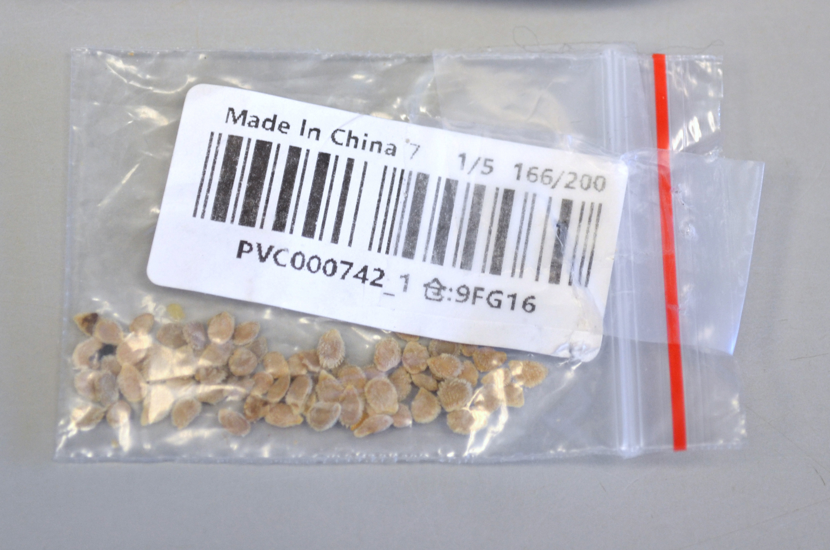 This man planted mysterious seeds from China he never ordered – here's what grew