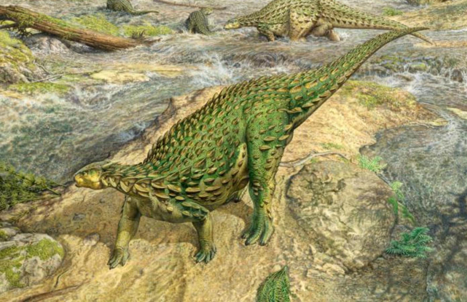 The only complete dinosaur skeleton ever discovered has finally been assembled