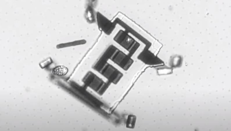 microscopic robots