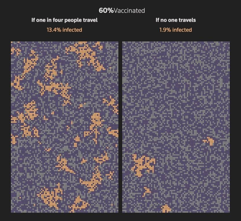 Coronavirus Herd Immunity