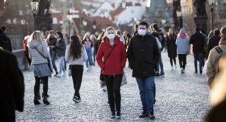 Coronavirus Update Fauci Risky Activities