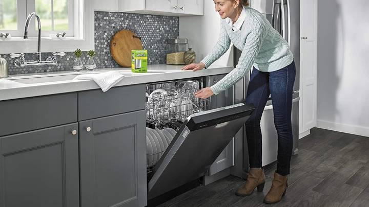 Best Dishwasher Cleaner