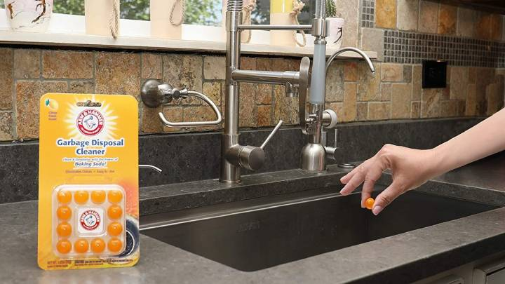 Top Garbage Disposal Cleaners