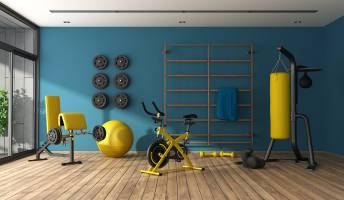 Exercise Immune System