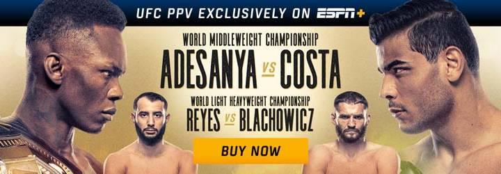 UFC 253 title fight
