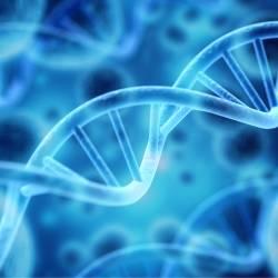 Prime Day DNA Test Deals