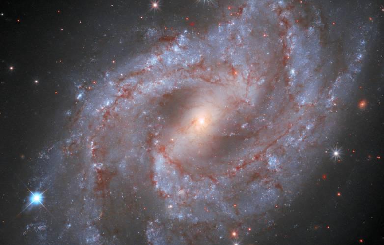 supernova timelapse